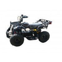 Mini ATV nuoma vaikams (0)